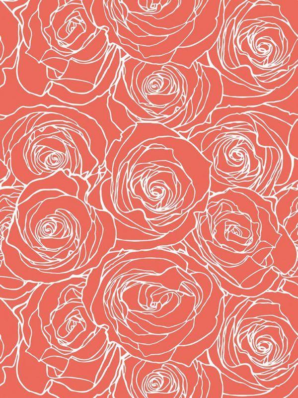 Bobina Papel de regalo CLASSIC • Rosas • Salmón Naranja Blanco • 62cm y 31cm x 100m